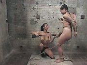 Taser torture
