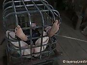 Hazel Hypnotic Cage Tales