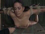 The Sexually Broken Trifecta