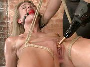 Beautiful Newbie Gets HogTied