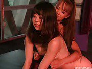 Asian slave worships