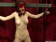 Sexy blindfolded slave
