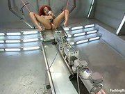 Daisy Ducati uses a web of machines & BDSM toys to cum