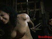Gypsy Loredana Imprisoned for BDSM Gang Bang
