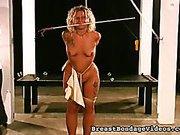 Vibrating Nipples
