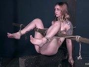 Predicament Slut