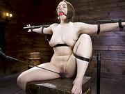 Playful Creature: Hadley Mason - Kink