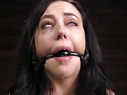 Fresh Meat: Whitney Wright Is Bound And Fucked - Kink