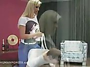 Ponyboy and blonde domme