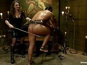 Mistress T canes a well endowed all muscle slave into