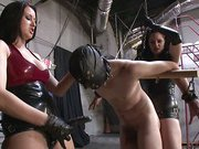 Tied slave was fucked in the ass