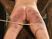 Serious punishment for bitches