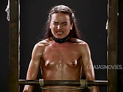 Rigorous training for the slave