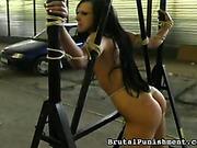 Slutty babe Steffi was bound and punished