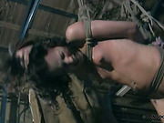 Totally suspended slavegirl gets full body punishment