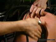 Suspended bitch got ass bullwhipped by spanker