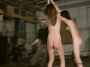Spanking of two nude victims hanging from the ceiling