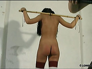 Tits and body bullwhipping for gagged brunette