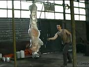 Harsh whipping set for hanging head down girl
