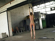 Hanging nude blonde got bullwhipping and breast torture