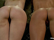 Busty sub lesbians dominated and whipped by mistress