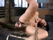 Hard bondage with leg suspension for Paola.
